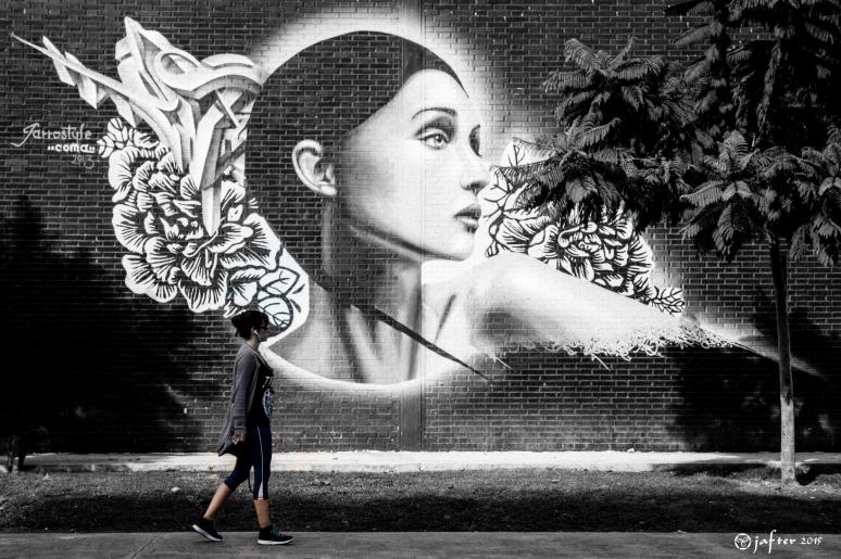Grafiti paseando al perro