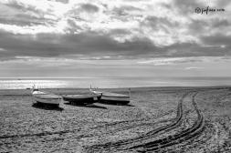 jabegas en la playa de san andres de Malaga