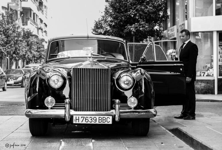 Rolls wp